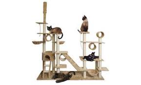Cat Trees & Furniture Deals & Coupons