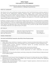 What To Put In Professional Profile On Resume Professional Profile Resume Examples Pdf Resumes For Teachers On T