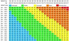 Body Fat Scale Chart Bmi Or Body Fat Percentage Which Should I Focus On Body