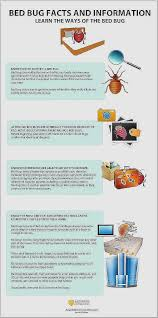 bed bug bully reviews. Bed Bug Bully Reviews Unique 41 Best Infographic Images On Pinterest I