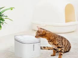 <b>Поилка для животных Xiaomi</b> Petoneer Smart Pet Water! MiRoom ...