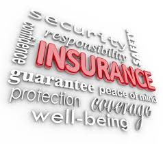 Credit Life Insurance Quotes Gorgeous Travel InsuranceZipCodes
