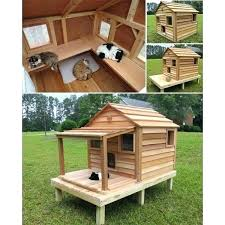 outdoor cat tree house cat house plans feral cat house plans new insulated cat house beautiful