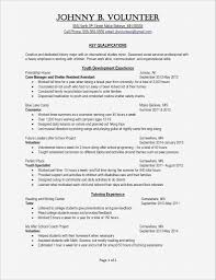 Professional Profile Resume Template Unique Resume Professional