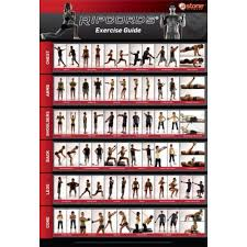 Resistance Tube Workout Chart Ripcords Exercise Guide Poster Resistance Band Workout Chart