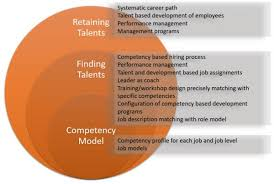 Talent Management System Talent Management Consulting
