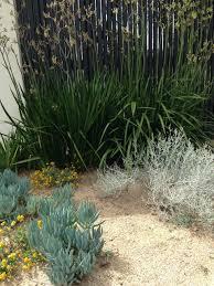 Small Picture The best garden designer in Australia Janna Schreier Garden Design