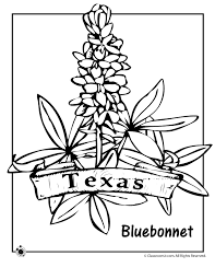 Texas State Flower Coloring Page Woo Jr Kids Activities