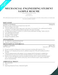 Sample Resume High School Graduate Gorgeous Sample Entry Level Resumes Entry Level Resume Example Cover Letter