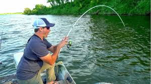 Light Bass Rod Catching Giant Catfish With Light Bass Fishing Gear Bass