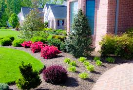 Small Picture Delighful Front Yard Garden Ideas With Very Little In Design