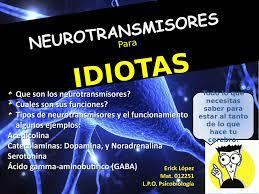 Calaméo Neurotransmisores