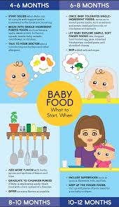food chart for 6 month old indian baby. baby food: what to start, when food chart for 6 month old indian s