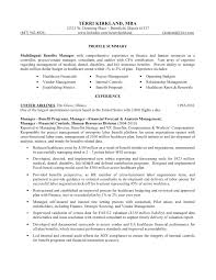 project manager resume healthcare resume general manager restaurant -  Sample Healthcare Project Manager Resume
