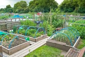 easy vegetable garden organic vegetable gardening ideas landscaping and gardening design throughout easy garden easy vegetable