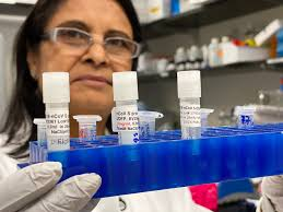 Meet Dr. Nita Patel and her All-Female Team Developing the COVID ...