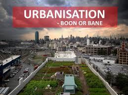 urbanisation boon or bane