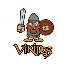 Image result for vikings cartoon