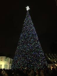 Delray Beach Christmas Tree