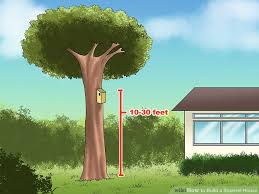 image titled build a squirrel house step 10