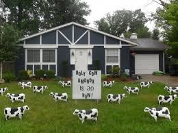 Monday. Cow Birthday Lawn Display
