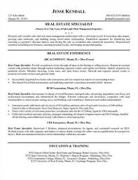 sample real estate consultant resume sample real estate resume sample download 111 55 kb junior travel consultant resume