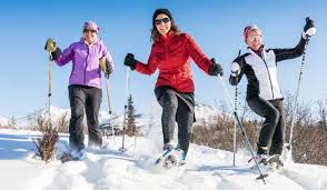 Image result for snowshoe