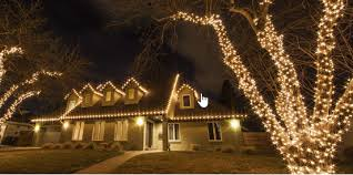 with a few measurements and a little bit of planning you can wrap your outdoor trees with lights if you do it right you can turn your outdoor