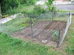 s garden fence to keep out rabbits against