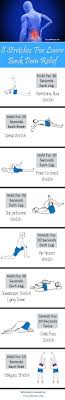 Exercises For Lower Back Infographic And Video The Whoot