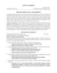 Director Of Finance Resume Resume Sample For College Student