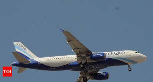 Indigo Airlines Login Indigo Airlines Indigo Goa Hyderabad Flight 14 Passengers Reach