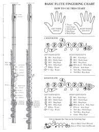 Musical Instruments Stage Studio Basic Fingering Chart