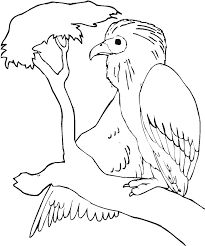 Small Picture Buzzard Is Sitting On The Tree Branch Coloring Page Tree