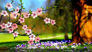 Spring flowers wallpaper, Pictures ...