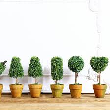 Office decorative Bulletin Boards 1pc Home Mini Artificial Plant Decor Decorative Potted Plant For Living Room Home Office Decoration Mariage Fake Flowers Rosewood Floral Shop Rosewood Decorating 1pc Home Mini Artificial Plant Decor Decorative Potted Plant For