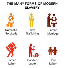 Education in the Fight Against Modern Slavery – EDUFEMINALITY