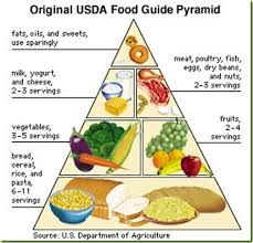 food pyramid 2014.  Food Tim Noakes HPCSA Deposition U2013 Part 16 Throughout Food Pyramid 2014