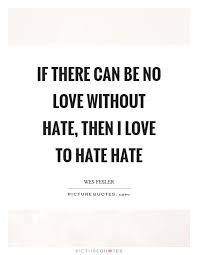 If There Can Be No Love Without Hate Then I Love To Hate Hate Beauteous No Love Quotes