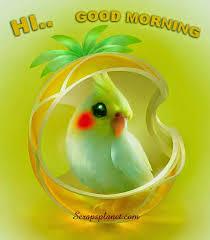 cute beautiful good morning images free