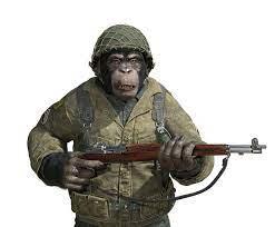 Chimp Soldier on white stock illustration. Illustration of animal -  152276638
