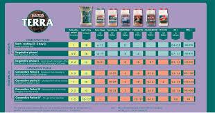 Canna Feeding Schedule Garden Design Ideas