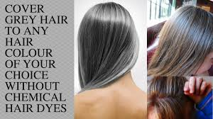 Natural Hair Color For Gray Hair