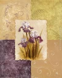 vivian flasch amethyst iris