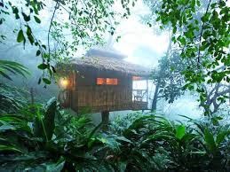 Dream Catcher Kerala Unique Top 32 Tree House Resorts In Kerala Kerala Backwaters Blog