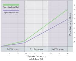 Pregnancy Weight Gain Week By Week Chart Weight Increase Chart During Pregnancy Co Gain By Month