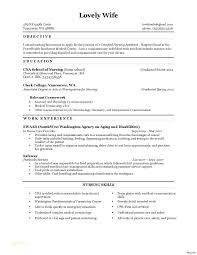 Cna Resume Examples Extraordinary Example Cna Resume Letsdeliverco
