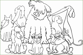 3 Kleurplaat Honden Kayra Examples