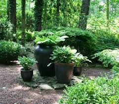 Small Picture 179 best Designing With HOSTAS images on Pinterest Garden ideas
