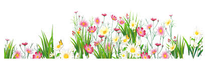 grass and flowers border. Wonderful Flowers View Full Size  In Grass And Flowers Border L